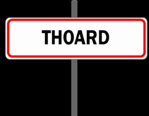 reparateur-ordinateur-Thoard